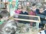2.B v knihovně