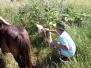 Druháčci navštívili Farmu Pod Dubovou horou